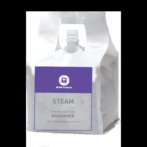 STEAM (single sale) - RAW Paints
